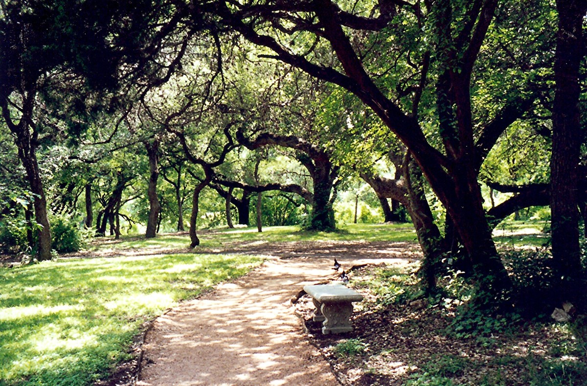 Los Patios...a nature lover's haven with beautiful grounds.