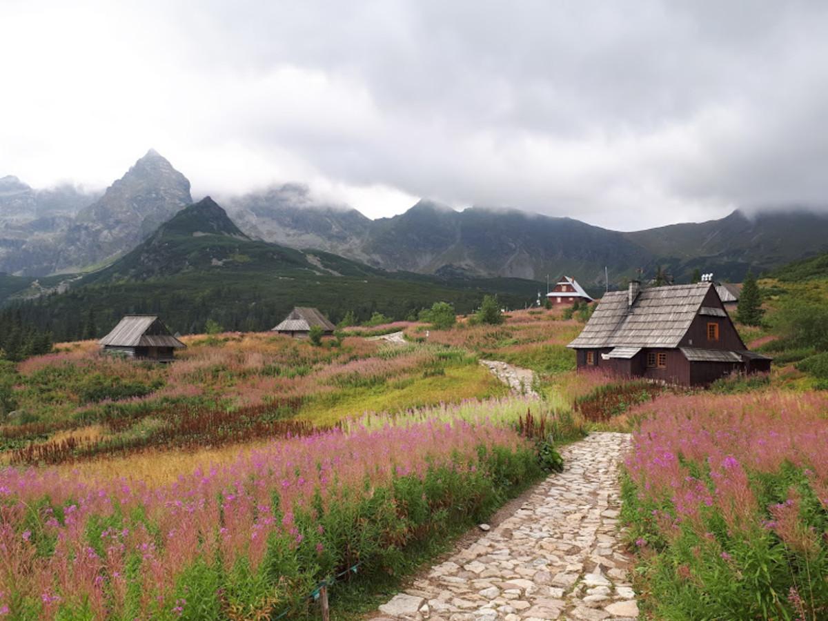My Experience Climbing Zawrat (2159 m) in the Polish Tatra Mountains