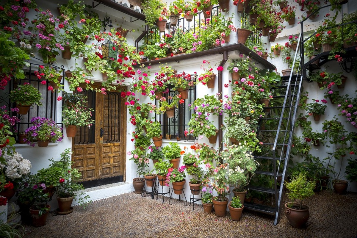The Courtyards Festivals of Cordoba