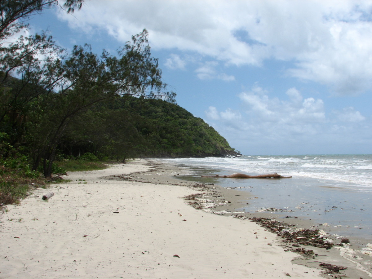 Noah Beach Campground, Cape Tribulation, Daintree National Park, North Queensland, Australia