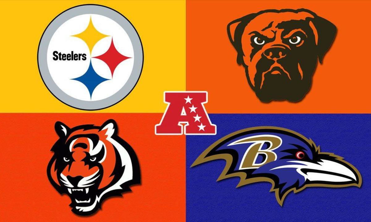 Image result for afc north