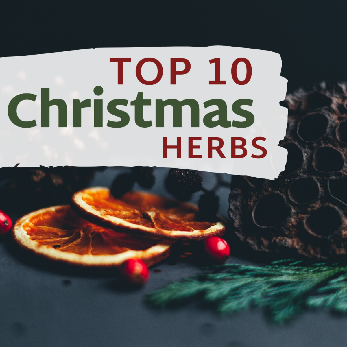 Top 10 Christmas Herbs and Spices