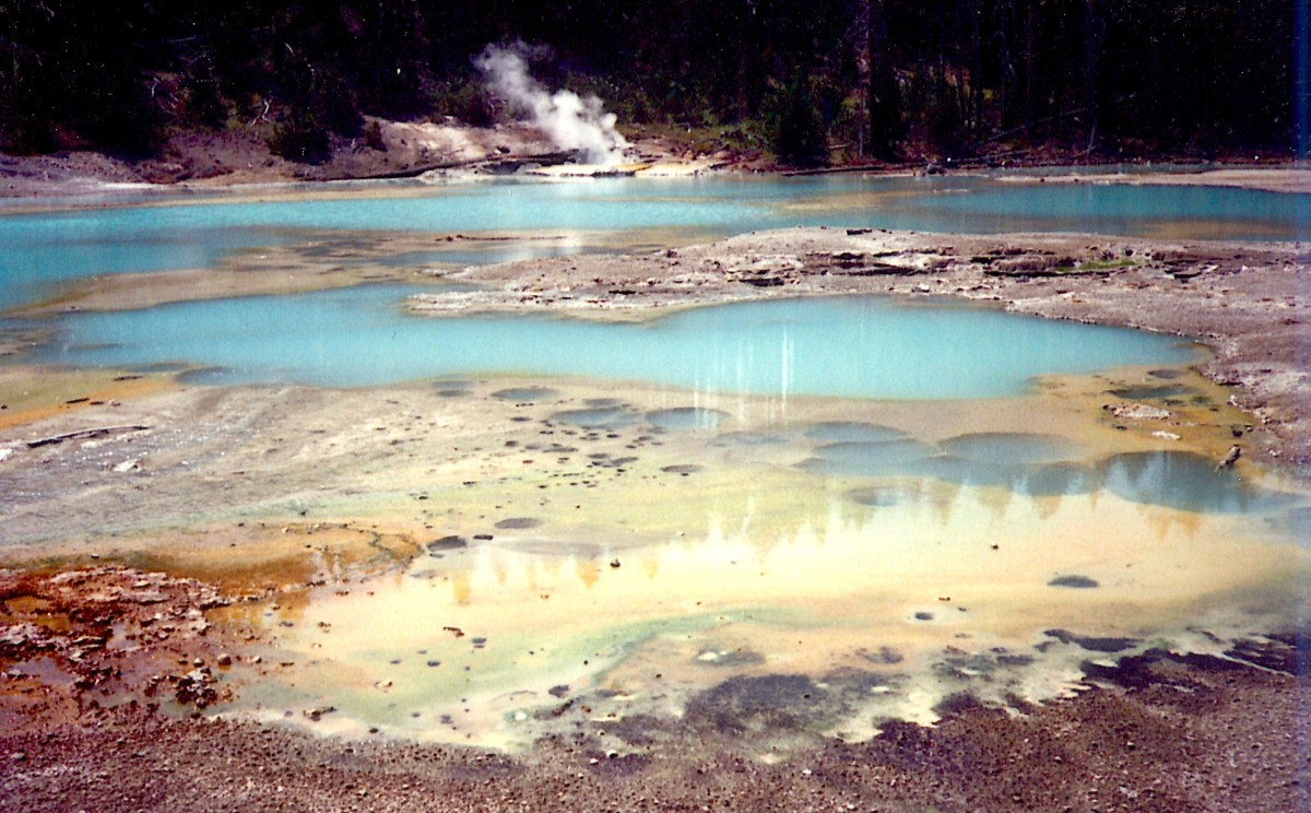 Colorful pools of water with steam rising in Yellowstone National Park