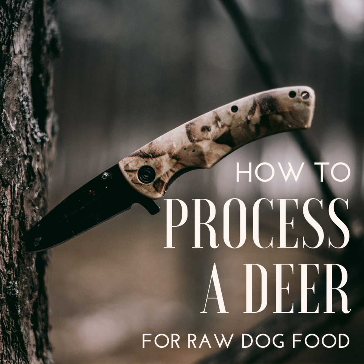 How to process a deer for dog food.