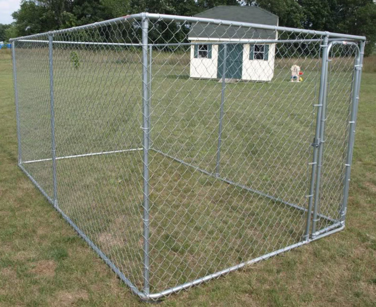 Should I Build or Buy a Dog Kennel Run?