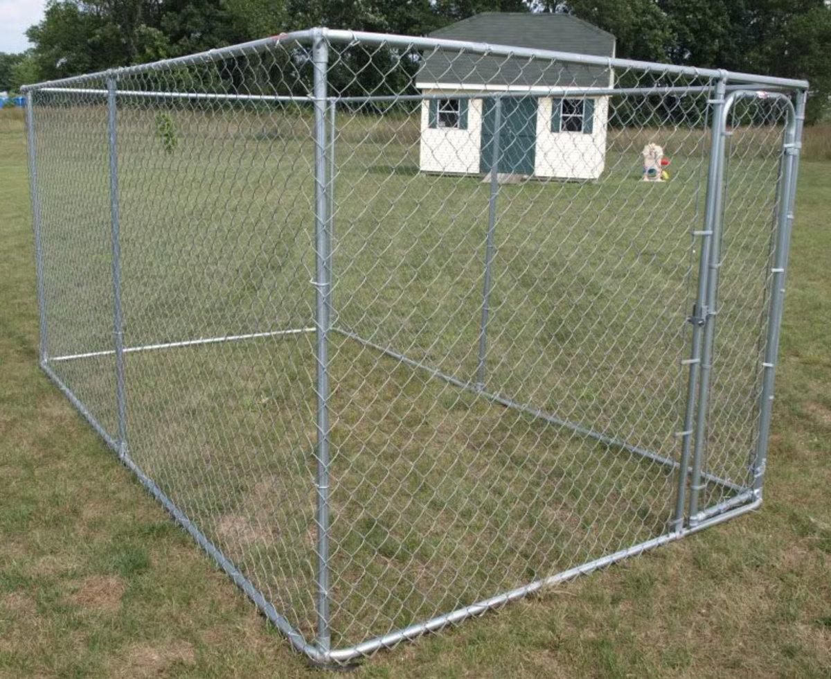 Should I Build or Buy a Dog Kennel Run?