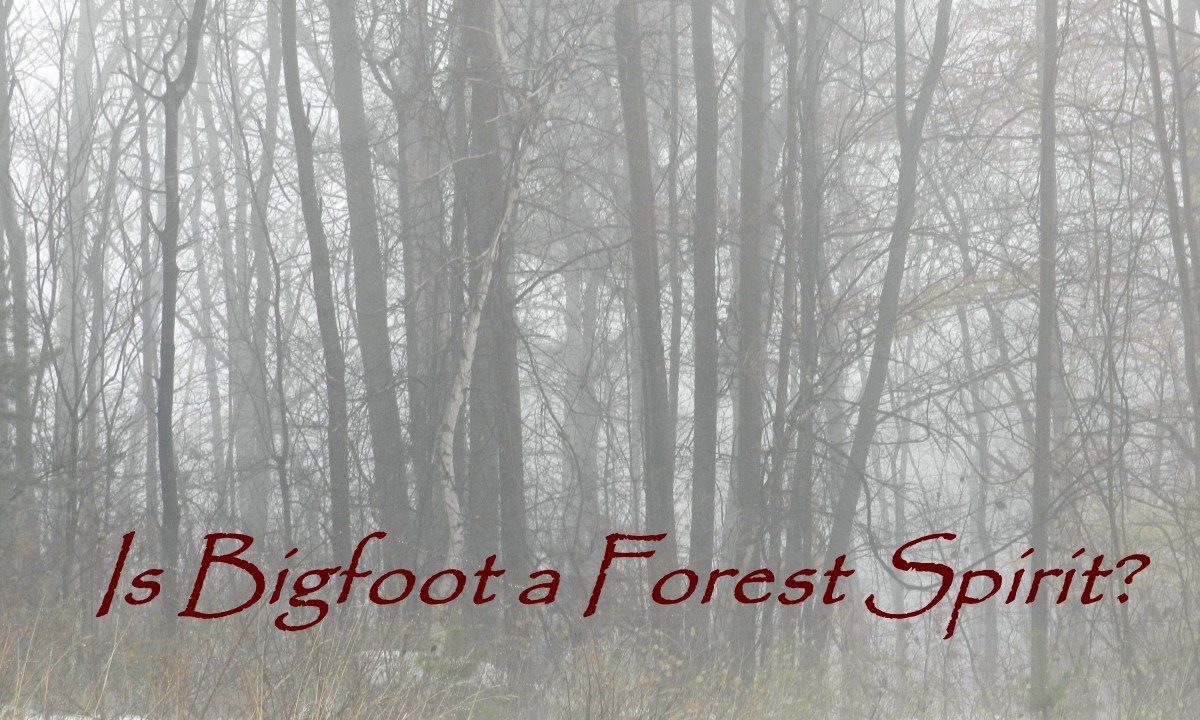 Is Bigfoot a Forest Spirit?