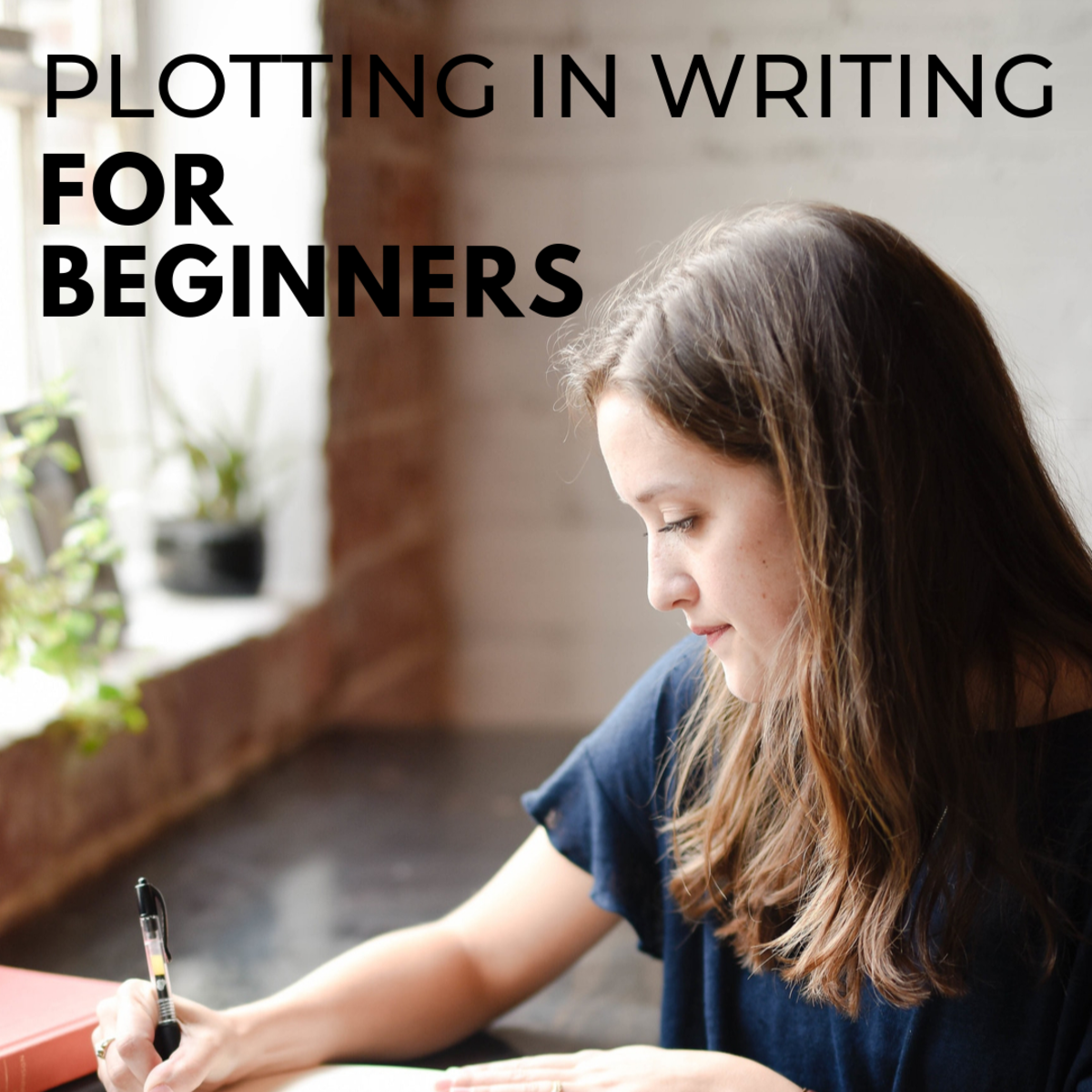 Plotting for Beginners