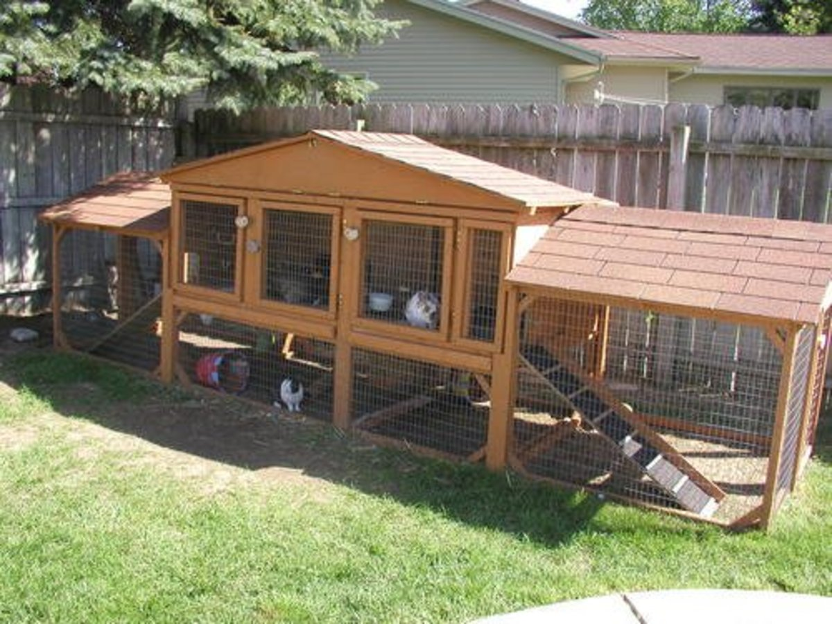A good-sized bunny hutch.