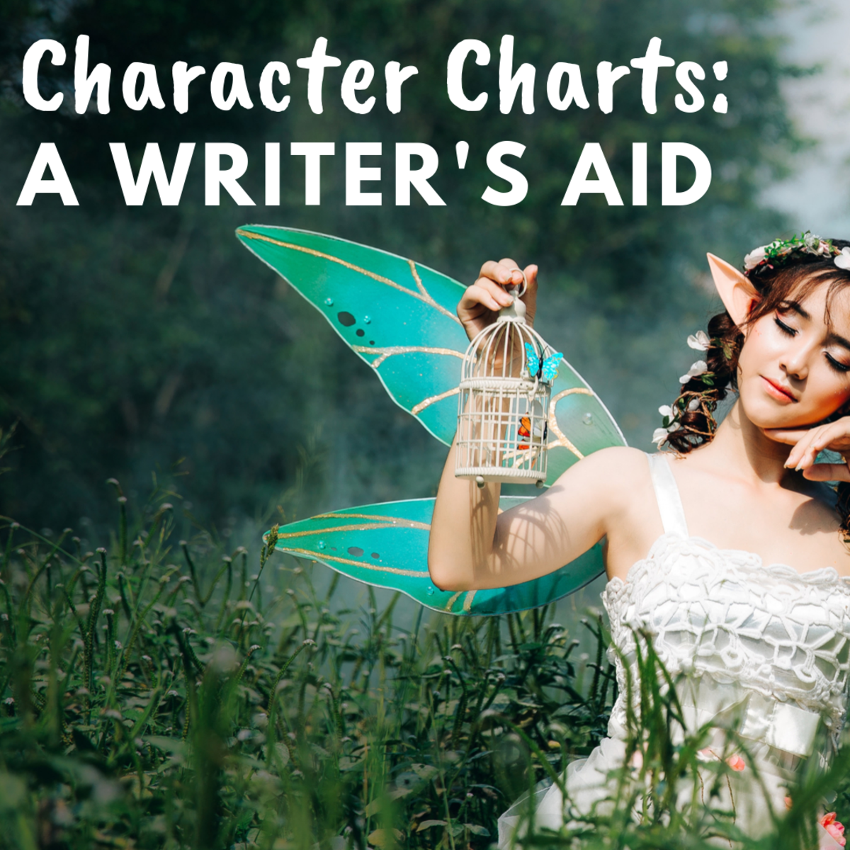 Character Charts: A Writer's Aid