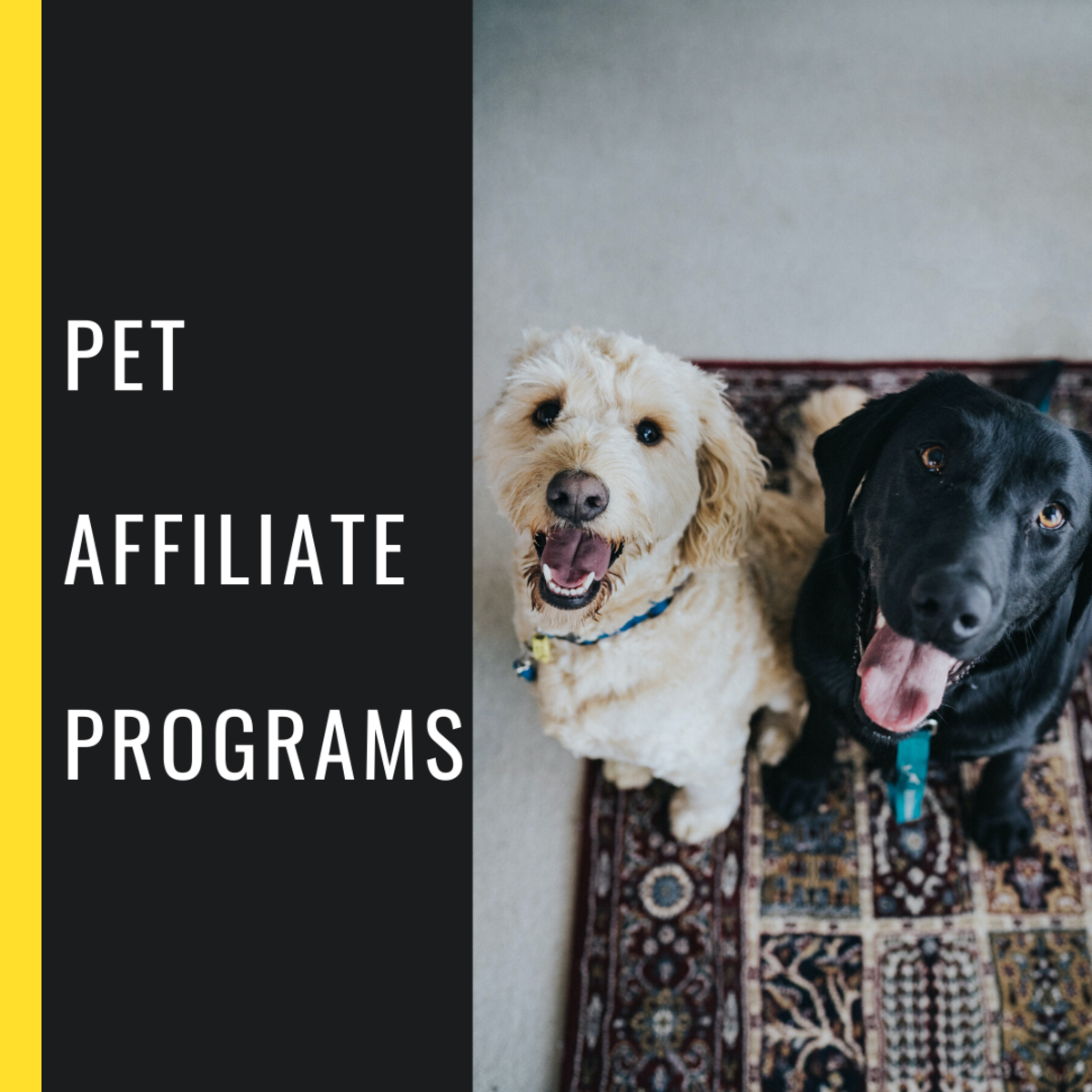 Learn more about these pet affiliate programs to see which is best for you.