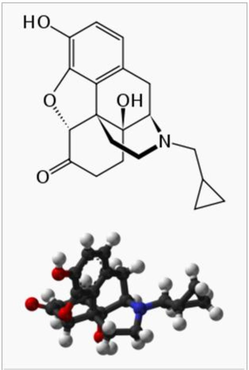 what-is-naltrexone