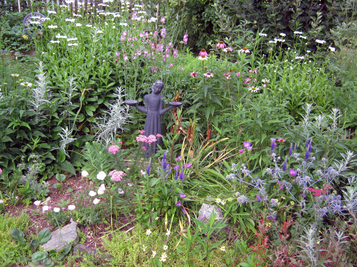 Keep Flowers Blooming From Spring Until  Fall - A Variety of Flowering Perennials and Bloom Time