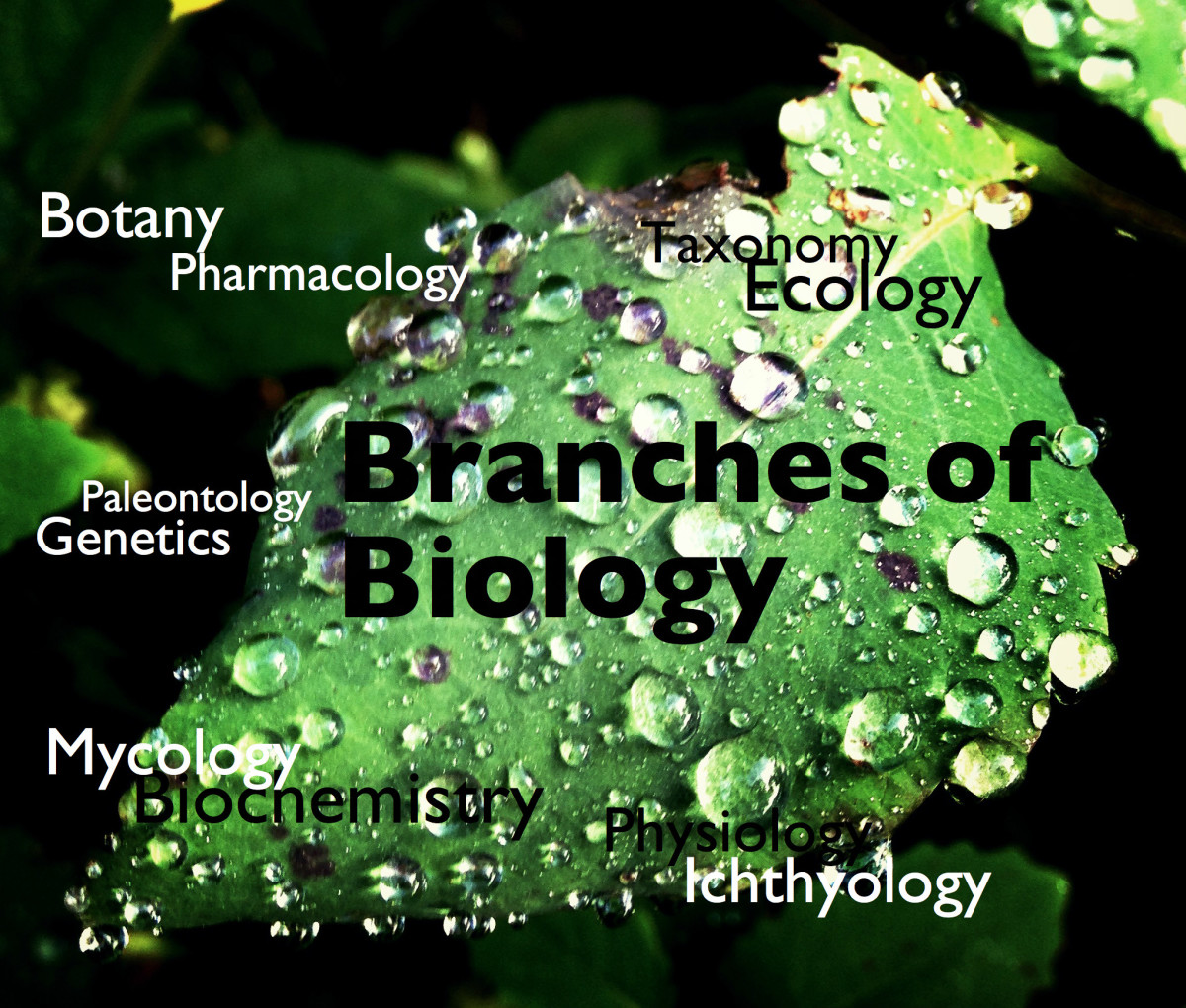 Biology is the study of living organisms.