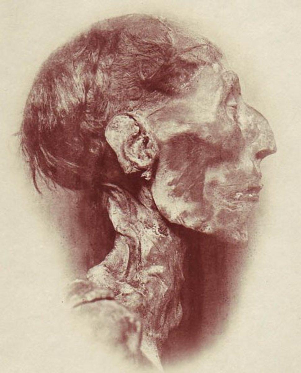 The mummified head of Ramesses II. Photo courtesy of wikimedia.org.