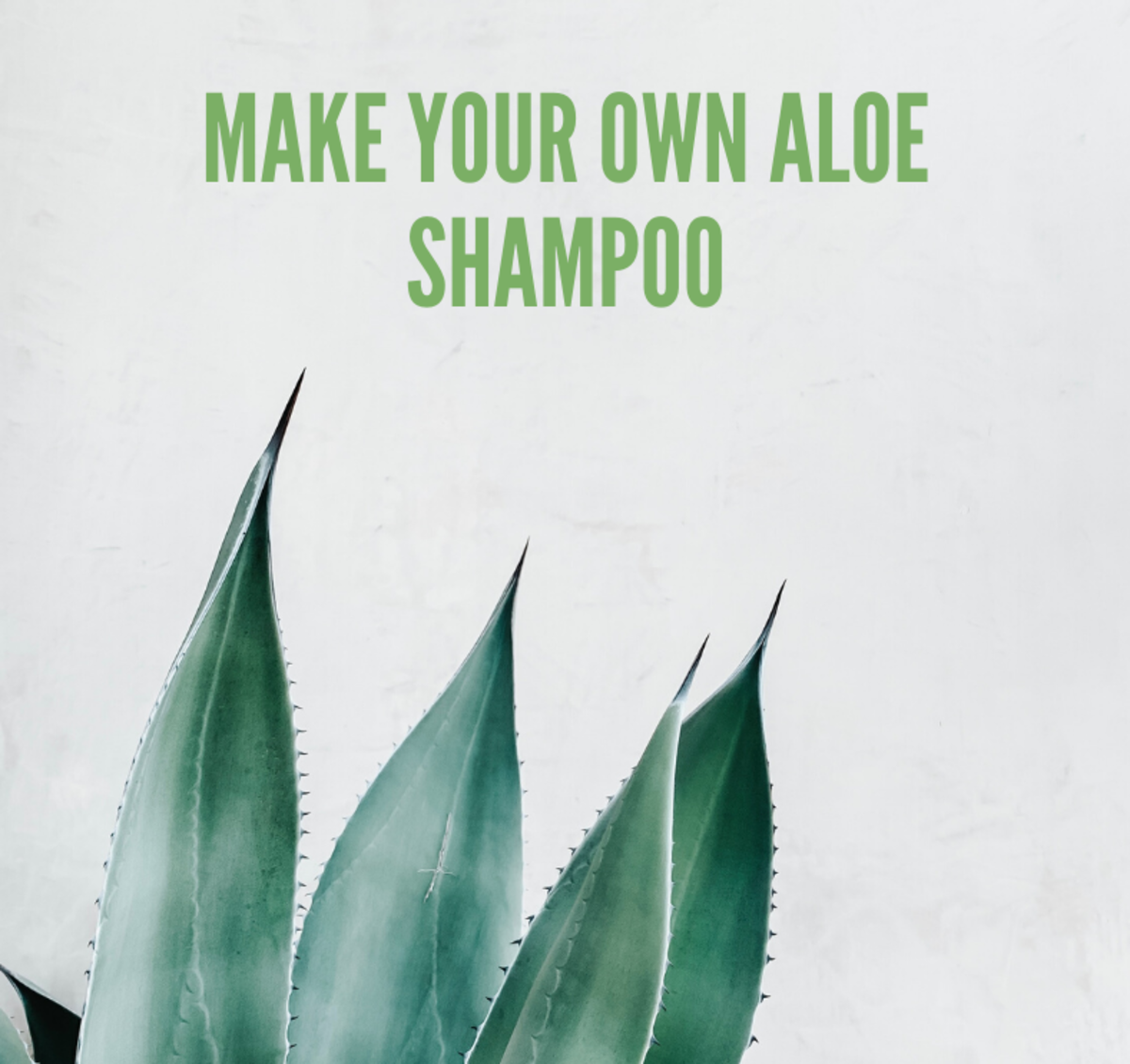 Aloe Vera Shampoo Recipe: Make Your Own Aloe Shampoo