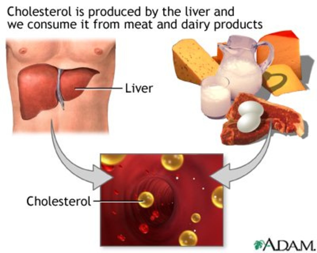 There Is Cholesterol in Some Plants