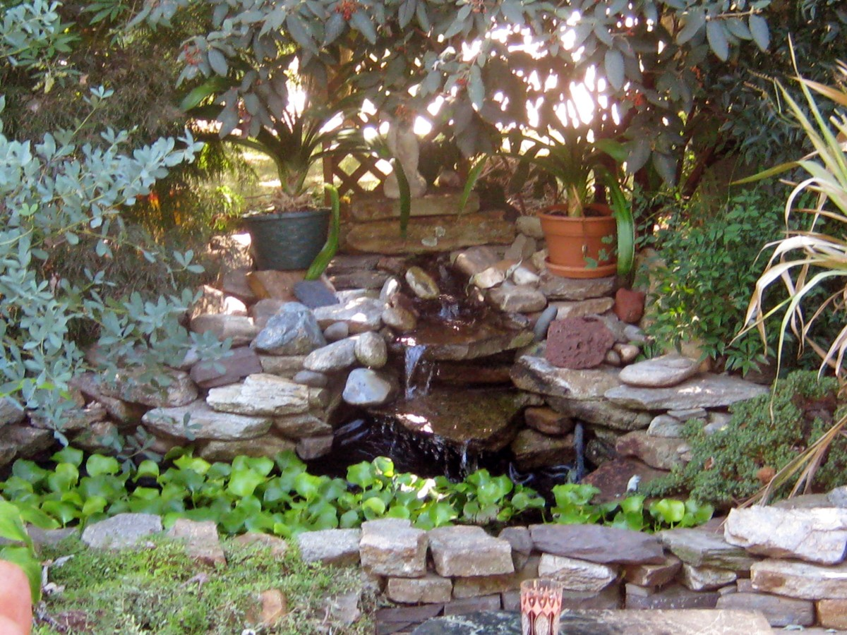 How to plan for a small backyard pond dengarden for Landscaping around koi pond