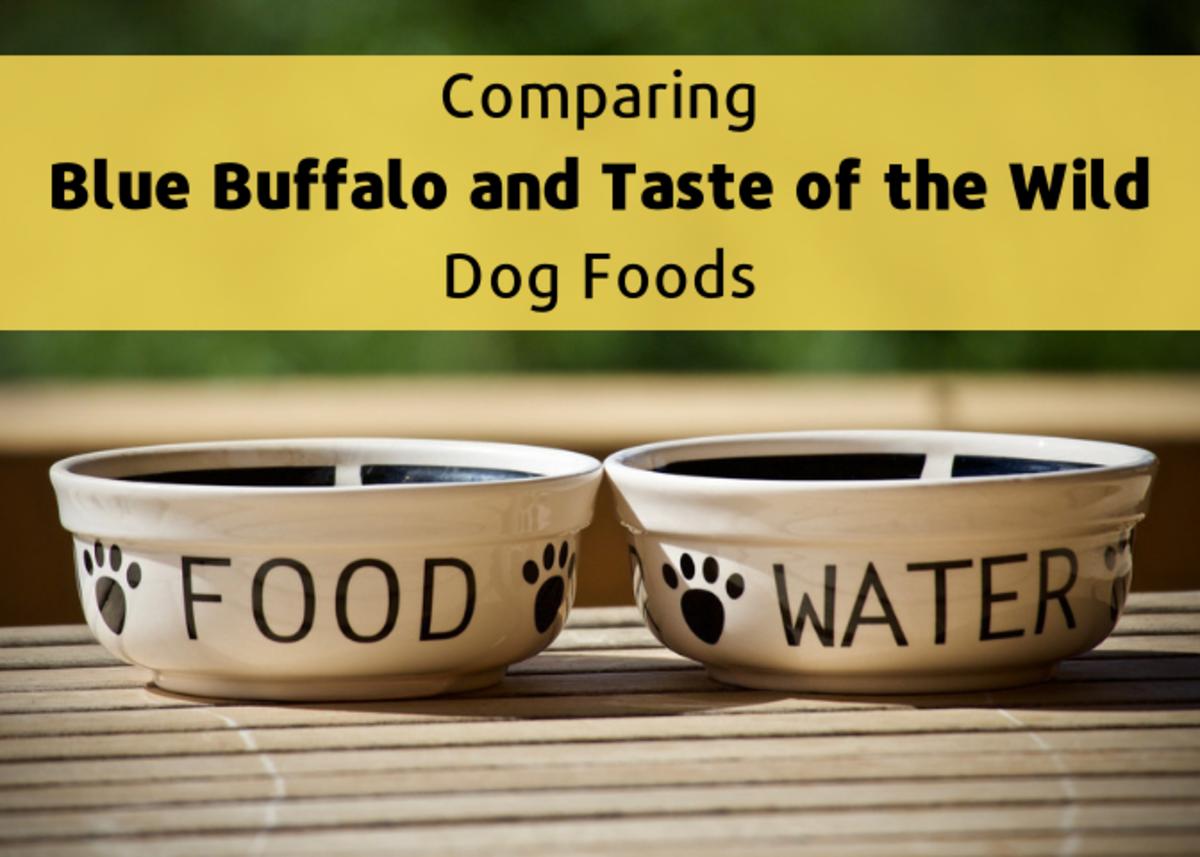 Healthy Dog Food: Blue Buffalo vs. Taste of the Wild