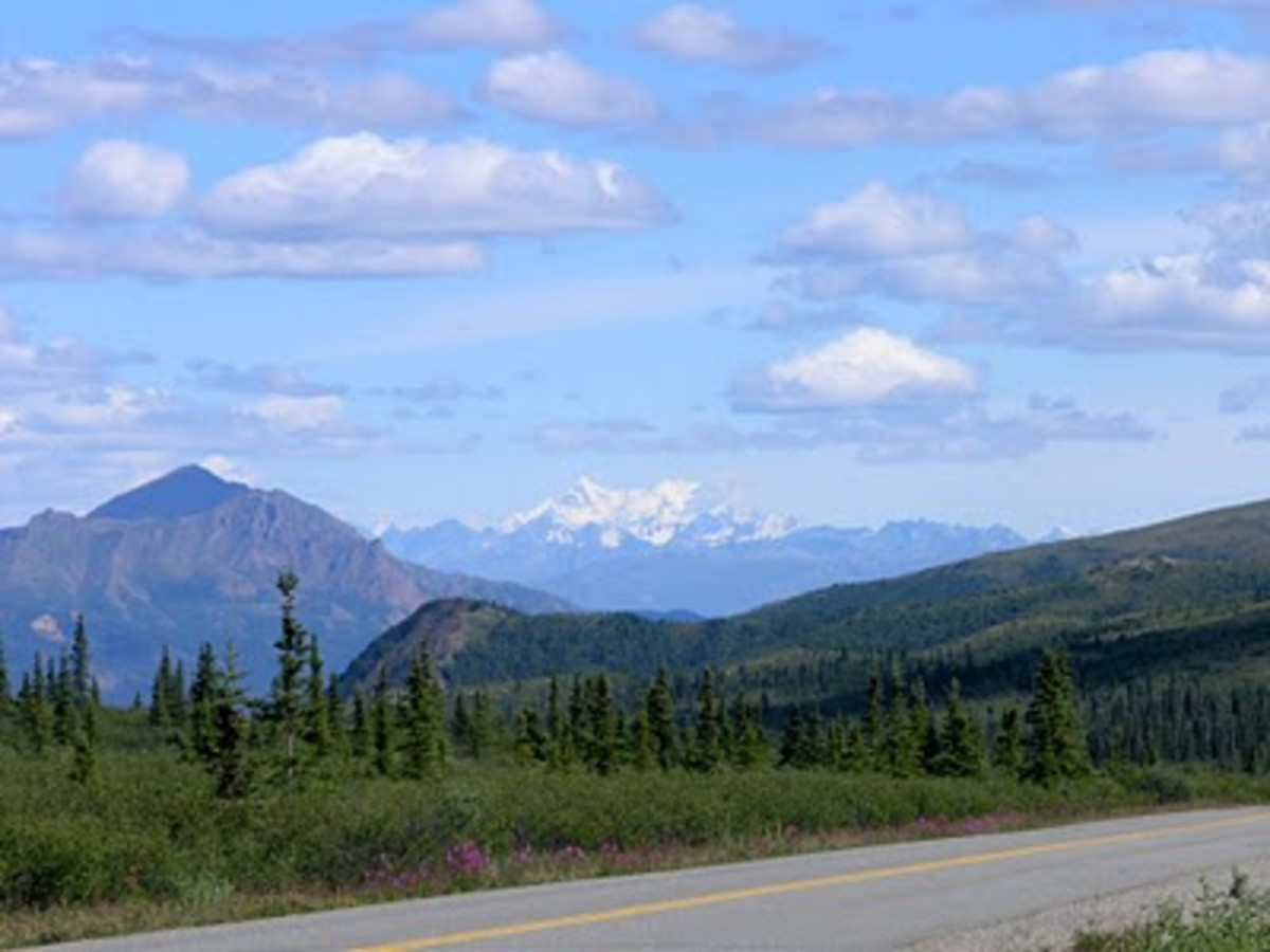 Best Road Trip: Alaska On The Alaska Highway