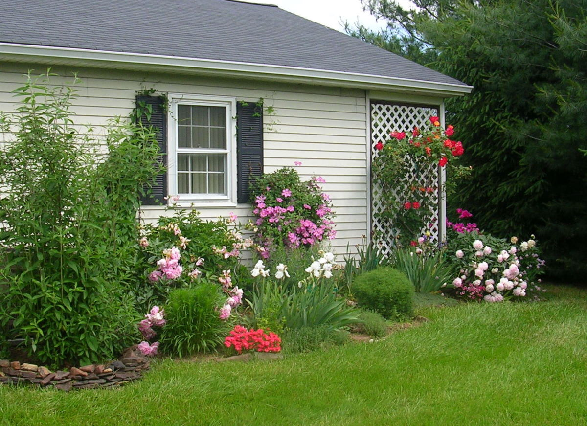 The Pre-War Garden: The garden just one year ago.