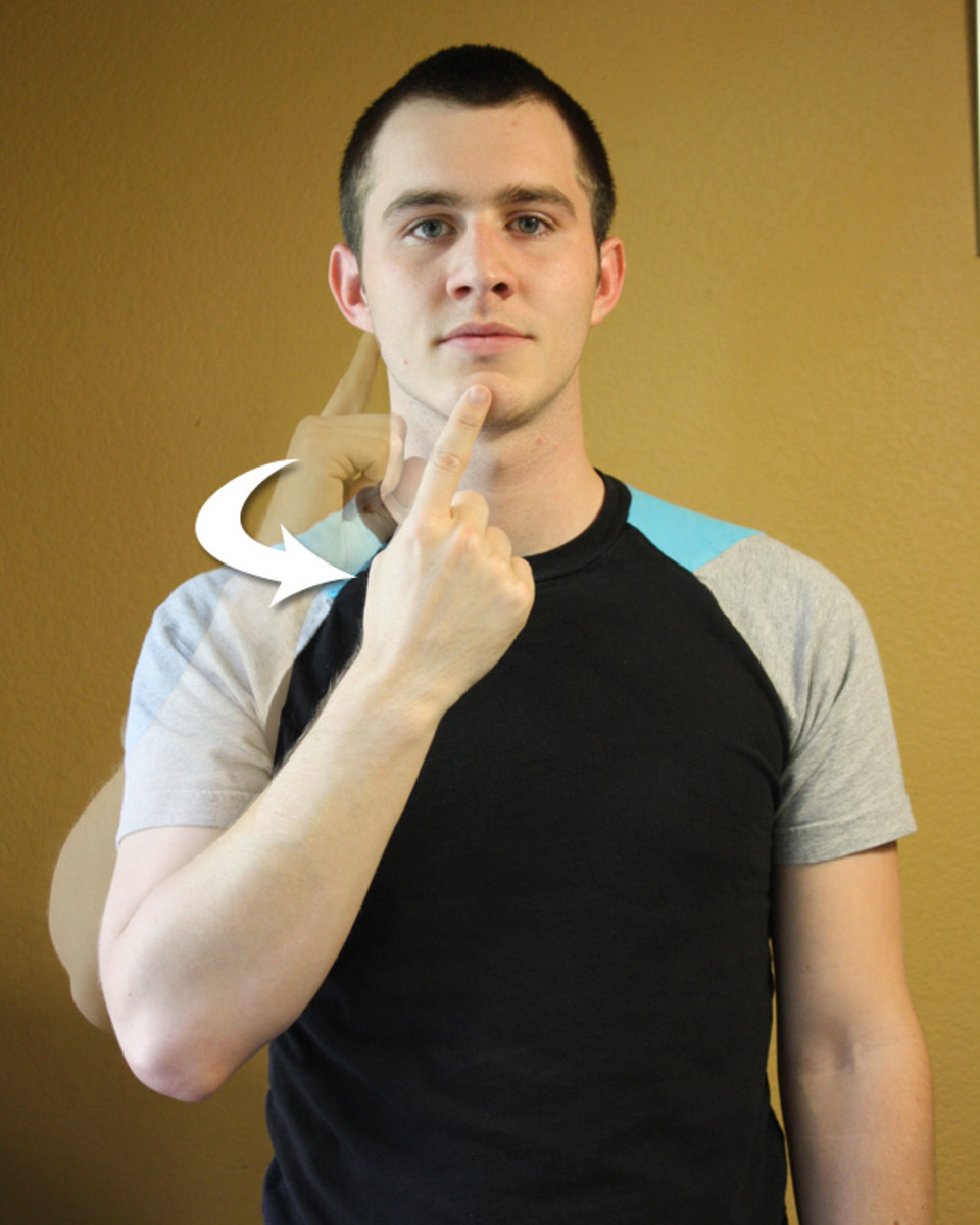 American Sign Language:ASL Beginning and Basic Words 1