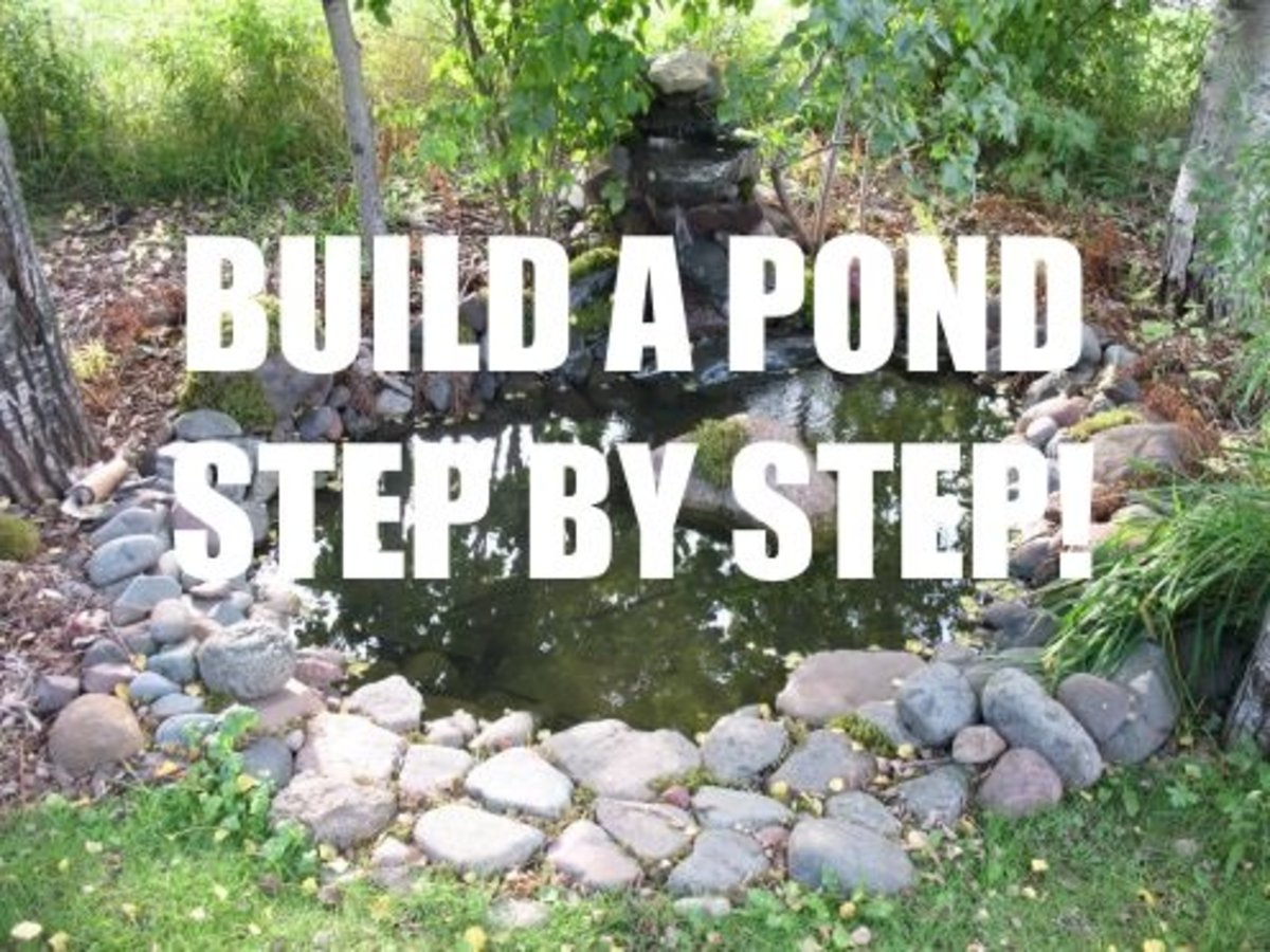 How To Build A Reflecting Pond