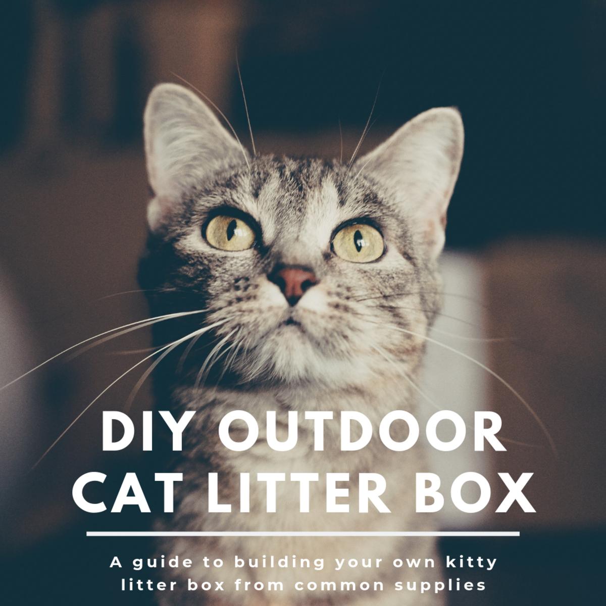 How to Build an Outdoor Cat Litter Box