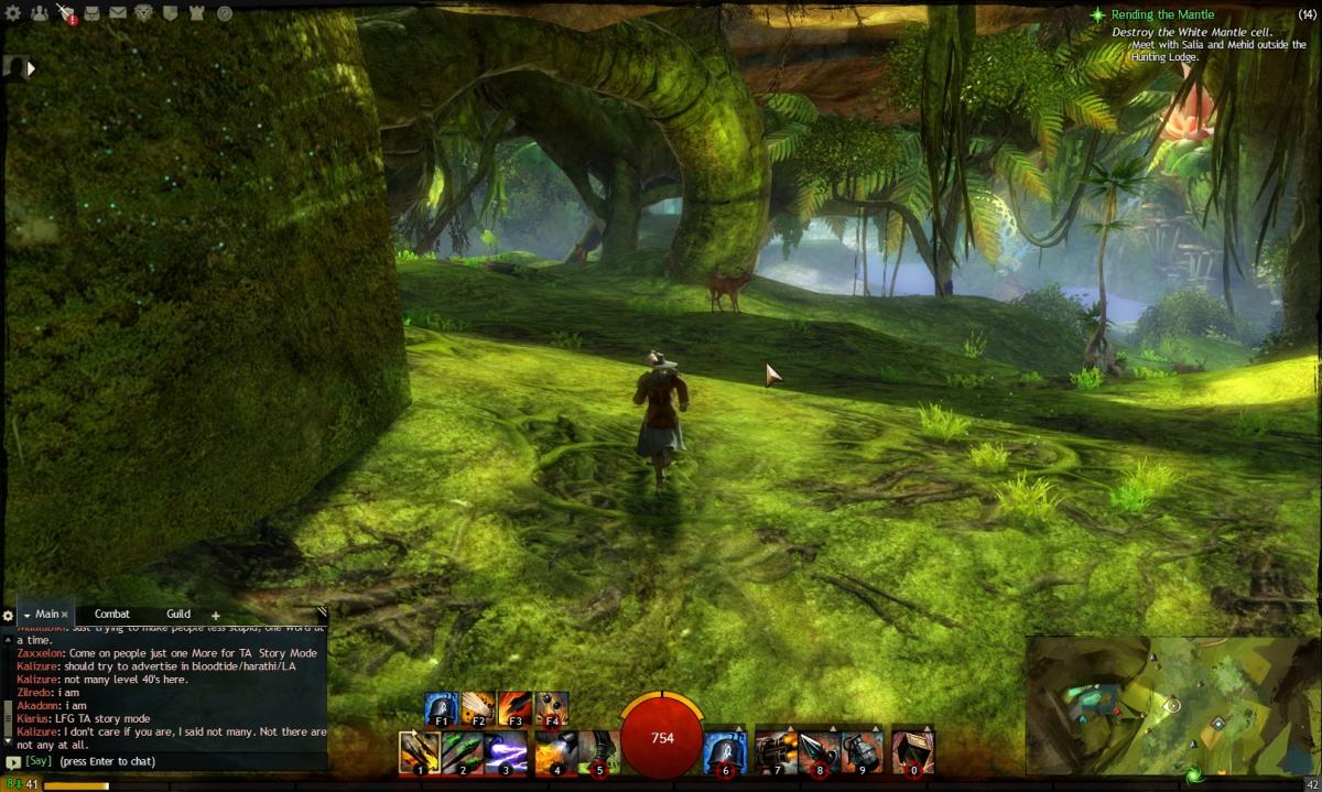 """Guild Wars 2"" Vista Location Guide: Caledon Forest"