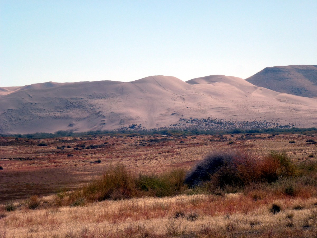 Visiting and Camping at Bruneau Dunes State Park, Idaho