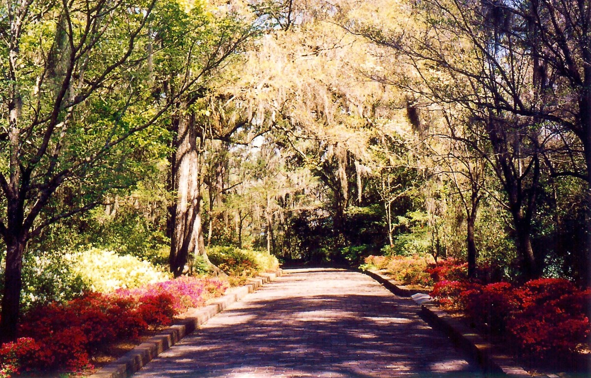 Entrance to Maclay Gardens