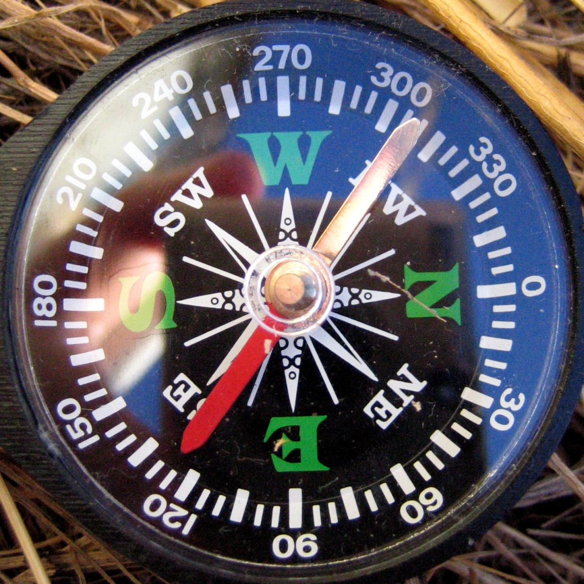 Very inexpensive compass; this is the kind we had with us on our hike-gone-wrong. It still got us to familiar territory.