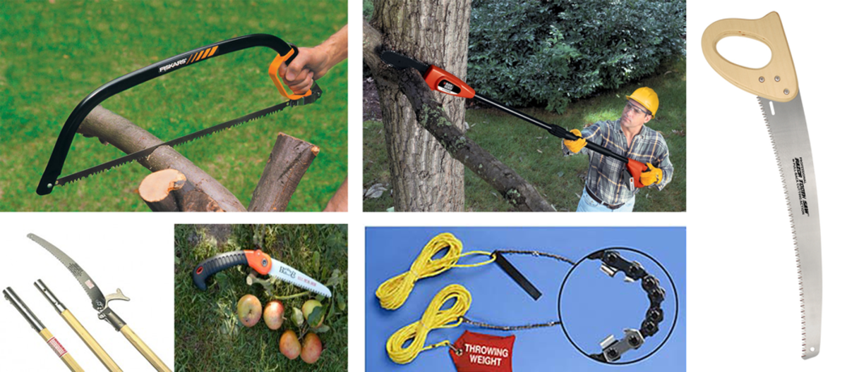 Some tree saws