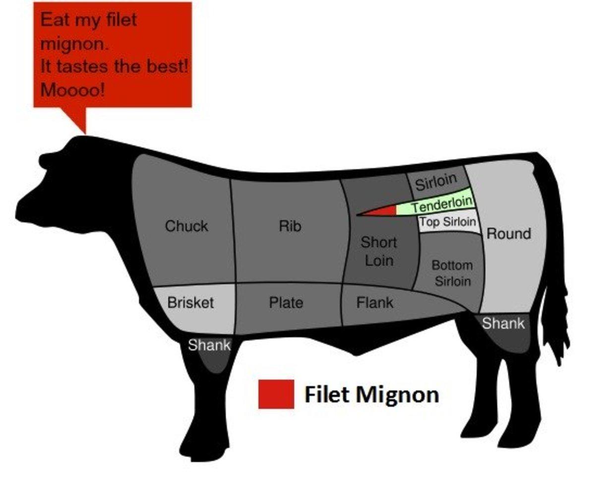 calories in 6 oz filet mignon grilled
