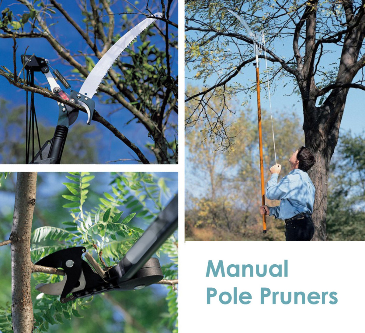 The 5 Best Manual Pole Pruners