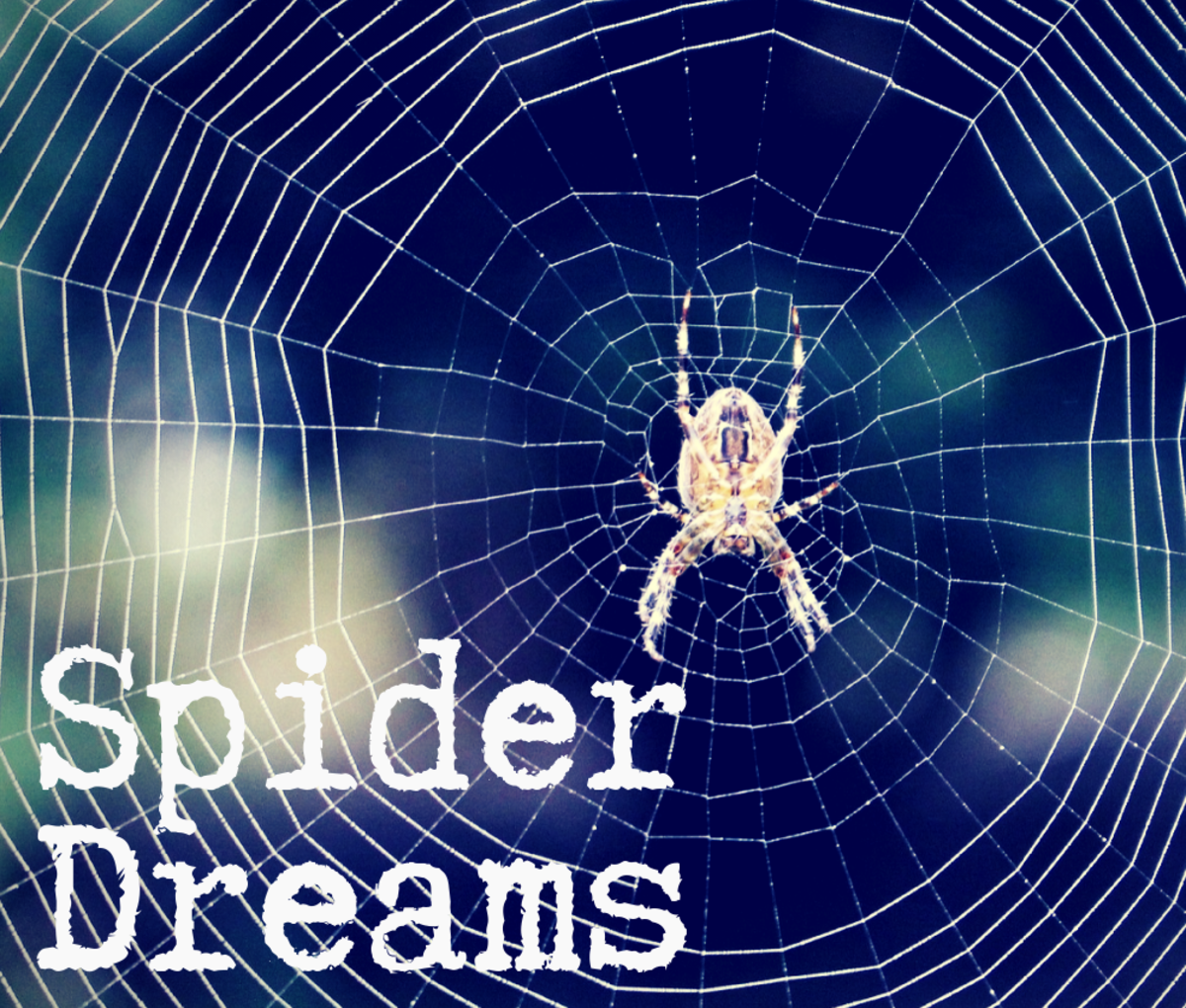 What does it mean if you dream about spiders or spider webs?