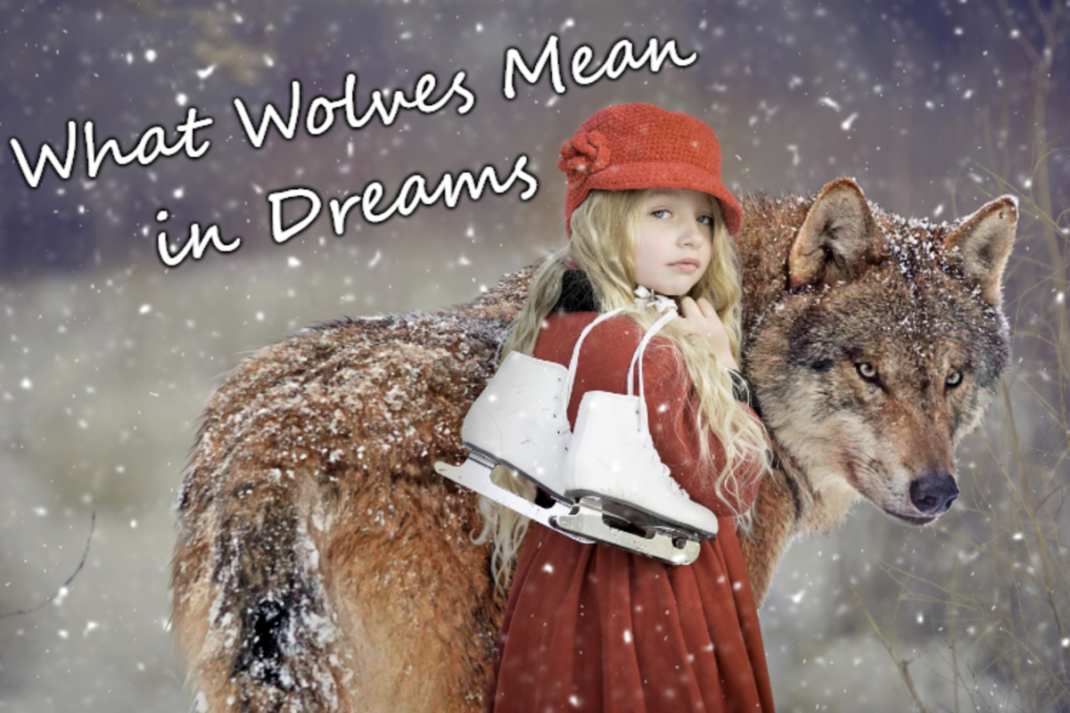 What Do Dreams About Wolves Mean?