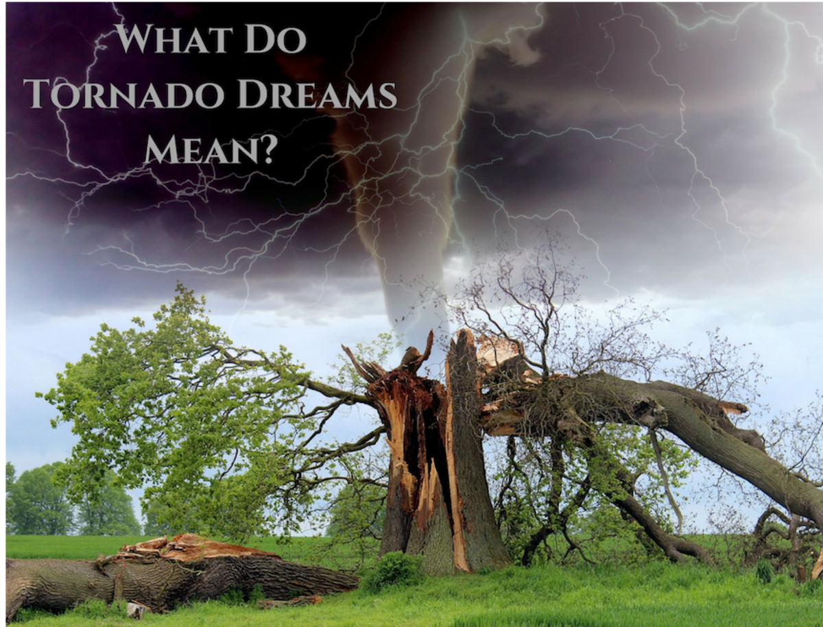 Dreaming of tornadoes? Here are some possible interpretations.