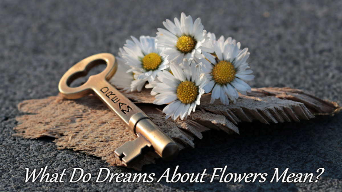 The Symbolism Of Flowers In Dreams Exemplore