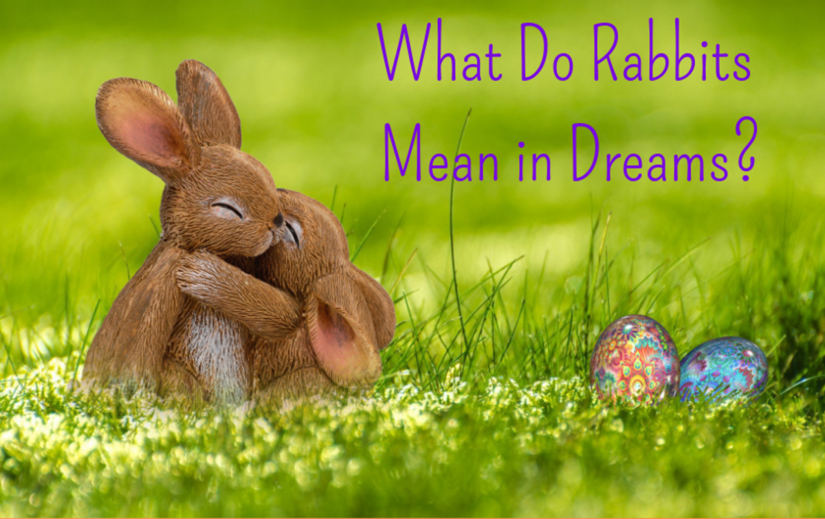 What Do Dreams About Rabbits Mean?
