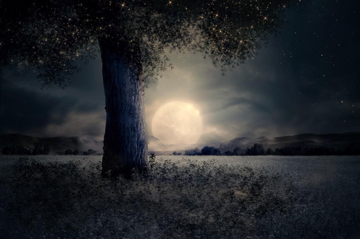 Midsummer Night Moon