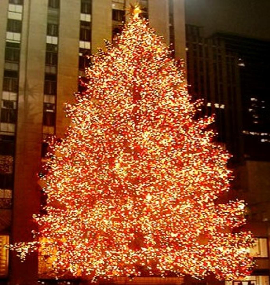 """Oh, Christmas Tree... Oh, Christmas Tree..."""