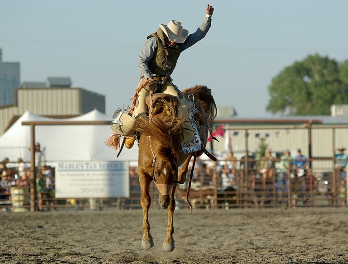 A cowboy riding a saddlebronc during a rodeo, most likely in Montana, US.