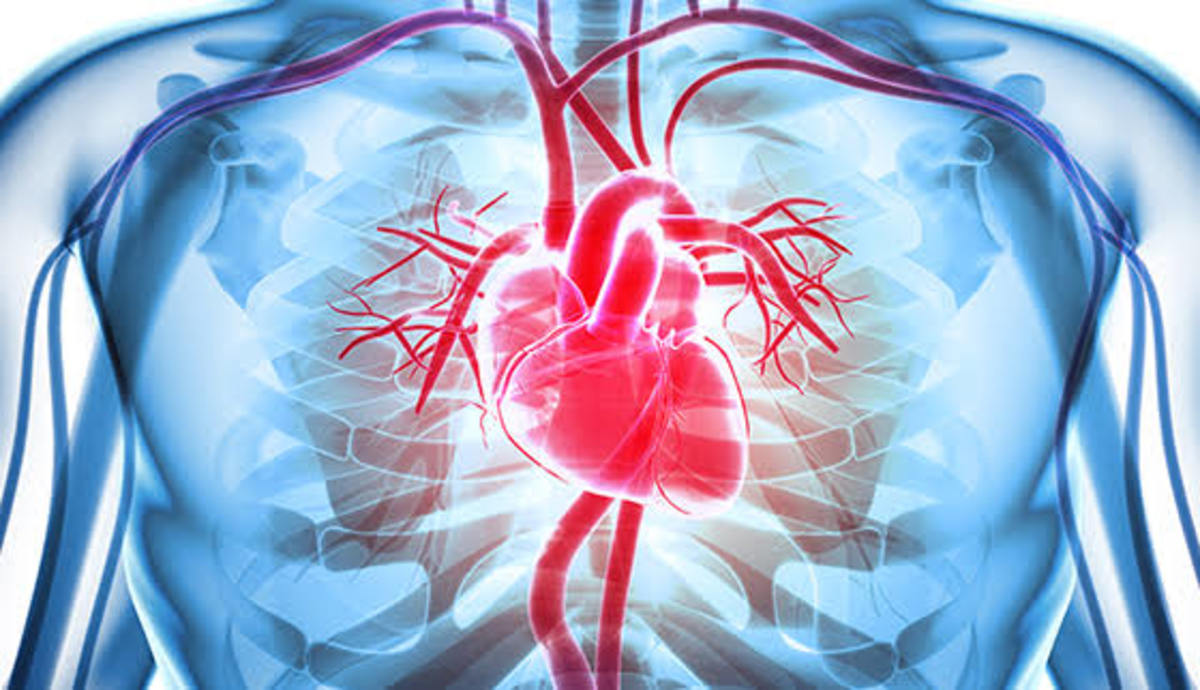 rheumatic-heart-disease-levels-of-prevention