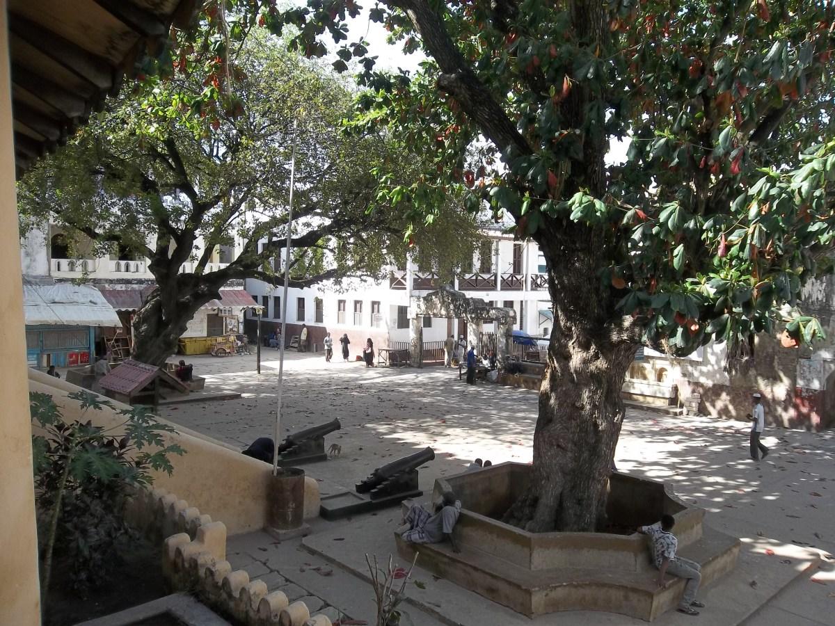 Mkunguni tree - the town square