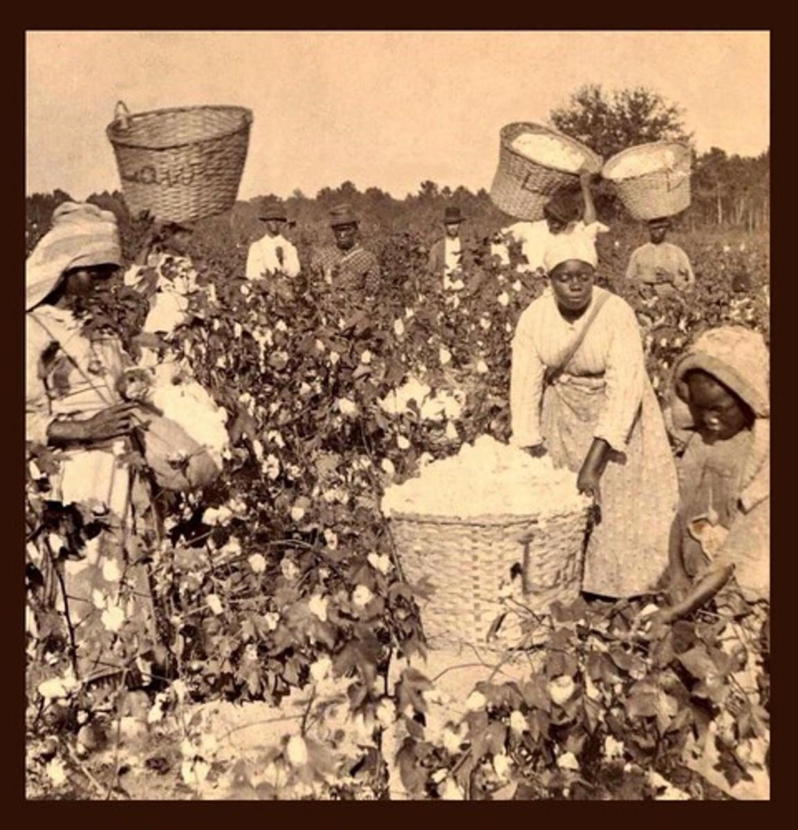 testimony-of-slaves