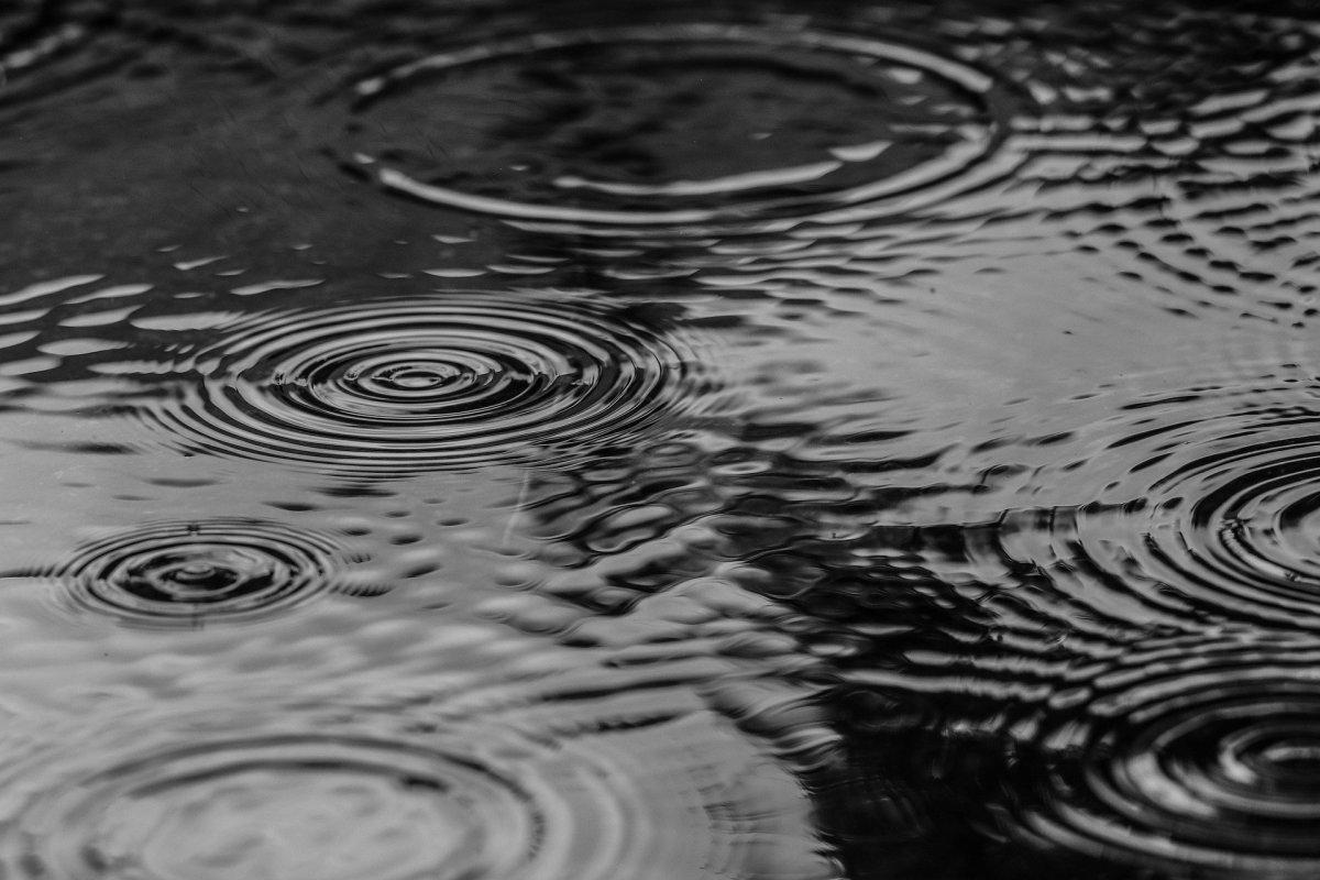 puddle-water-rain-nature