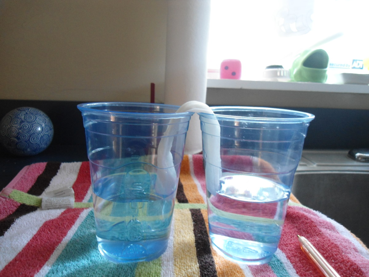 Here are two cups 12 hours later.