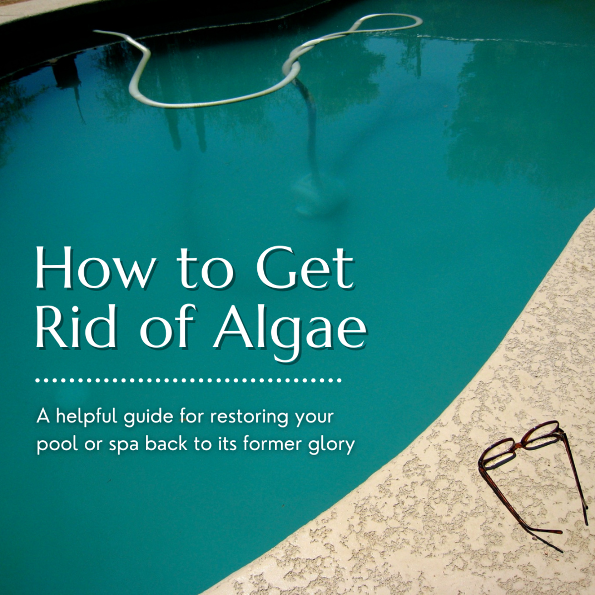 This article will help you identify what kind of algae you might be dealing with and how you can get rid of it.