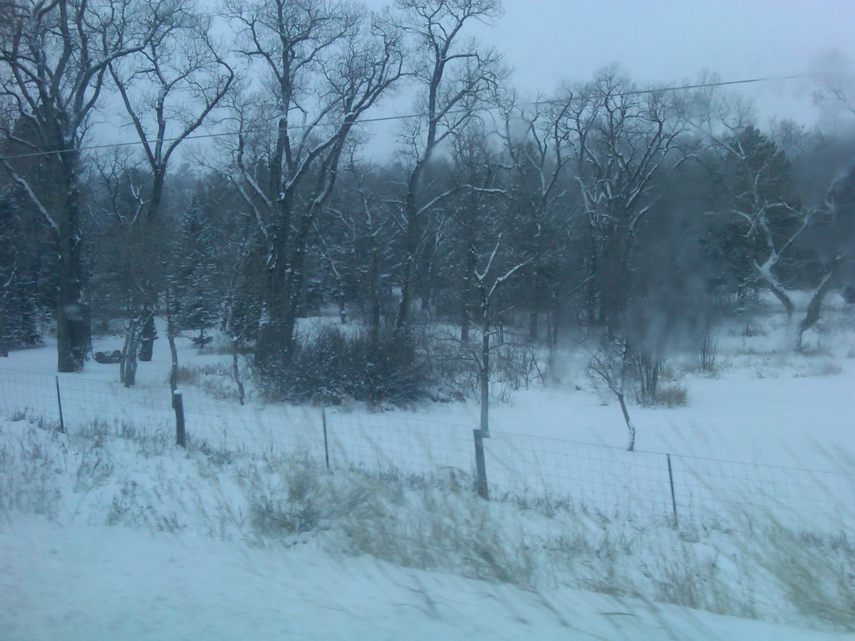 Pretty pastoral scene or a miserable day?